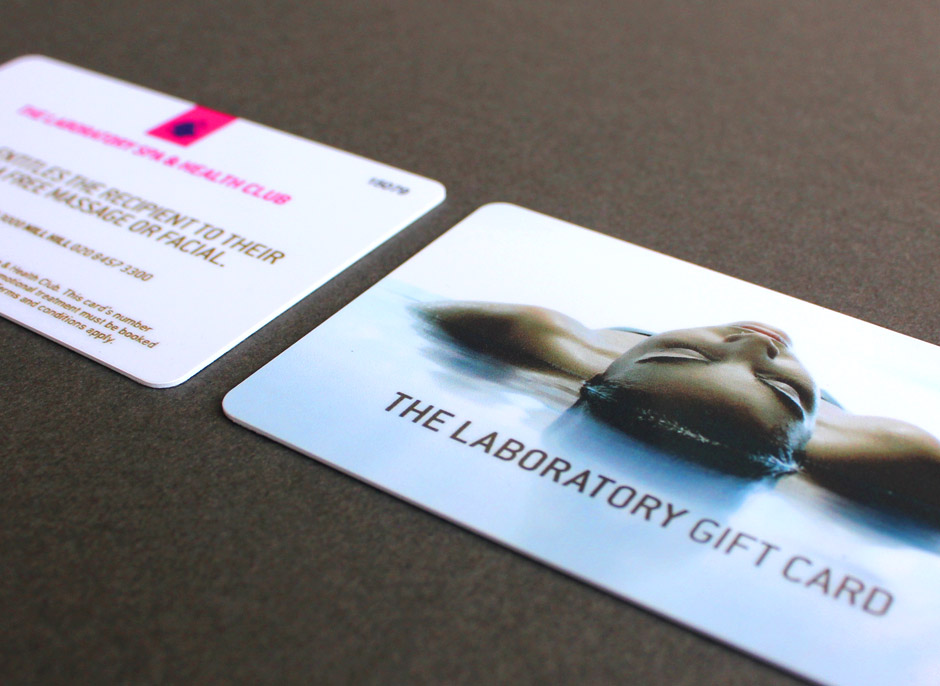 The Lab Mailer 2